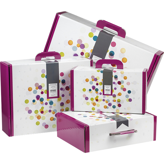 Valisette carton rectangle Voyage Gourmand bulles/violet